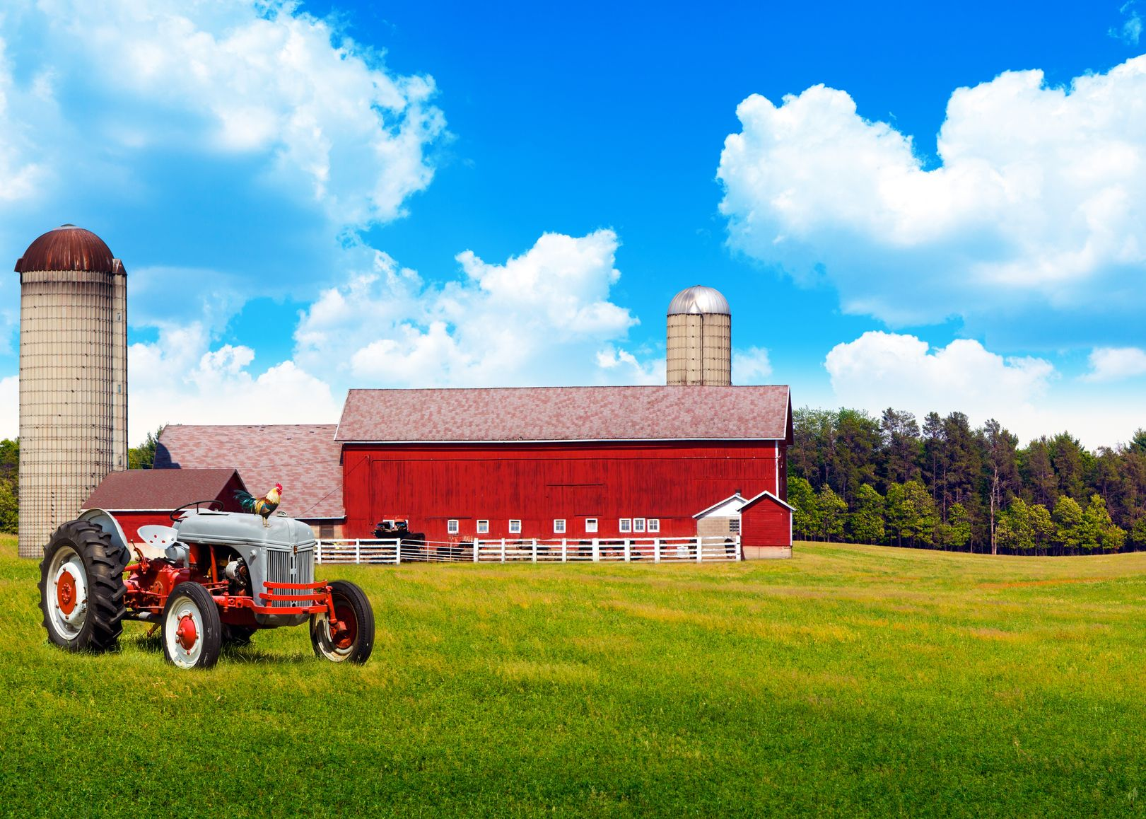 Minneapolis, MN. Farm & Ranch Insurance